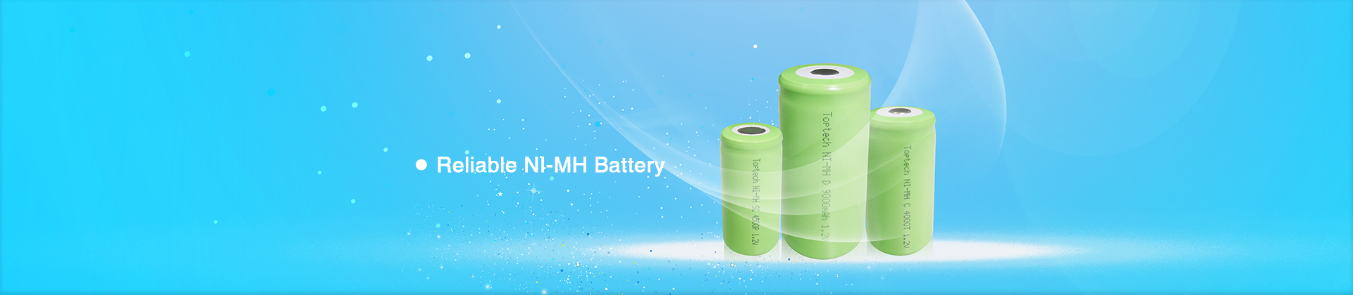 Toptech Battery